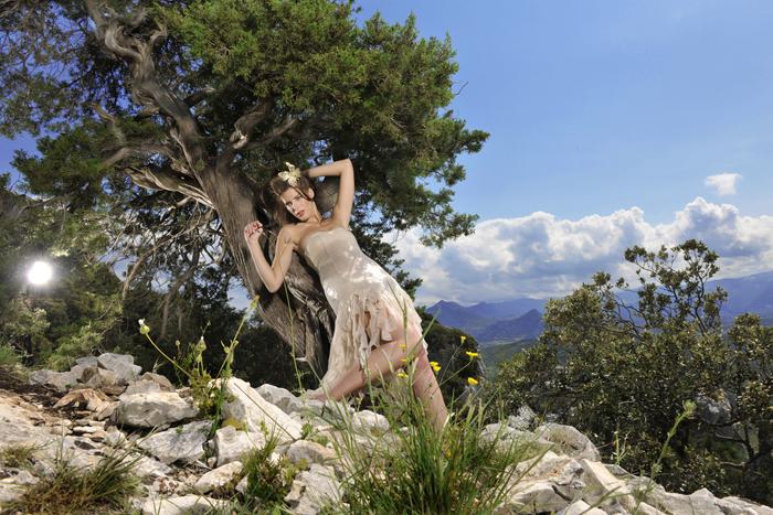 sardinien_baum_Savas Turanci Photography